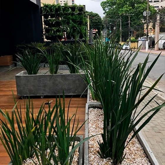 Agrônomo Paisagista Jardins - Arquitetura Paisagista