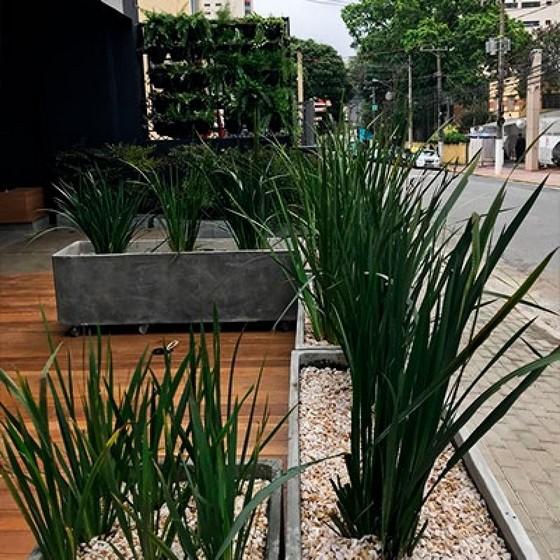 Empresa de Paisagismo Urbano Panamby - Paisagismo com Pedras