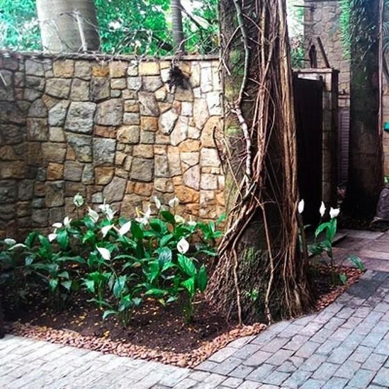 Onde Encontrar Jardinagem para Residência Jardins - Empresa Paisagismo e Jardinagem