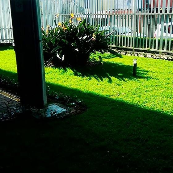 Onde Encontro Empresa de Jardinagem Vila Leopoldina - Empresa Paisagismo e Jardinagem