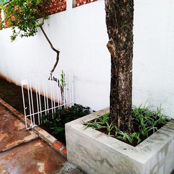 Onde Encontro Serviços de Jardinagem Vila Olímpia - Empresa Paisagismo e Jardinagem