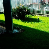 paisagismo jardinagem Sumaré