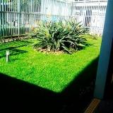 serviço jardinagem Panamby